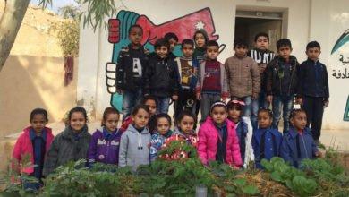 Photo of Support the Greening the desert team to build school gardens in Jordan