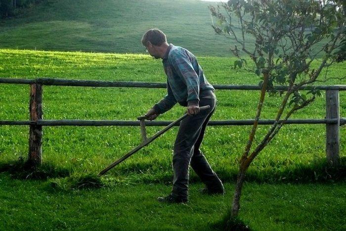 Man cutting lawns