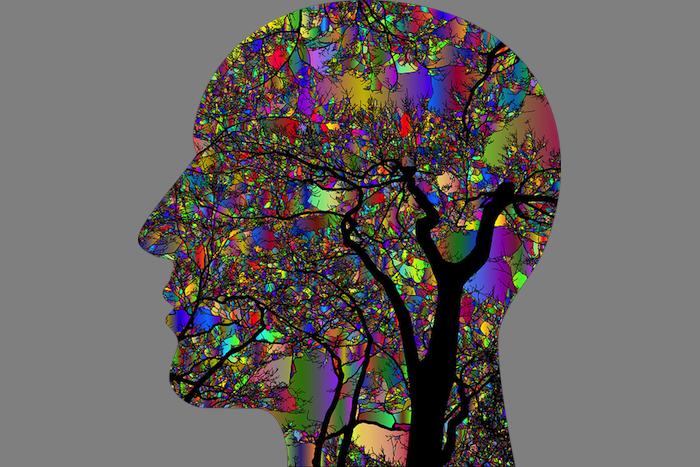 Mind Tree