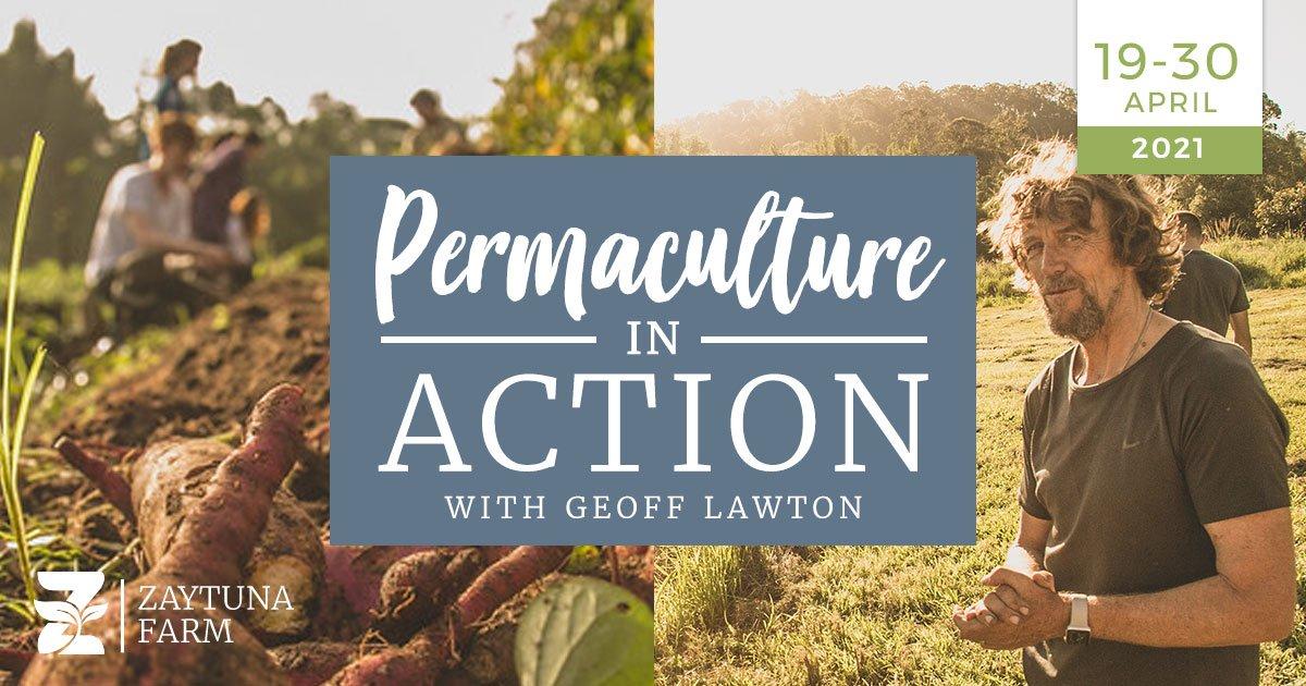 4 Weeks Permaculture Internship