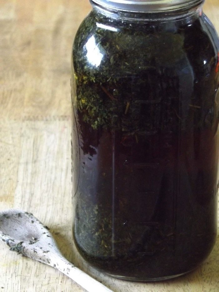 Nettle Infusion
