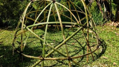 Photo of Geodesic Bamboo Stardome