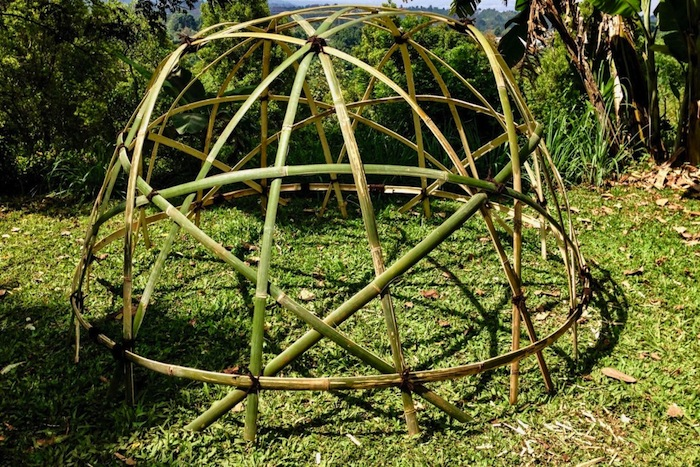 Geodesic Bamboo Structure