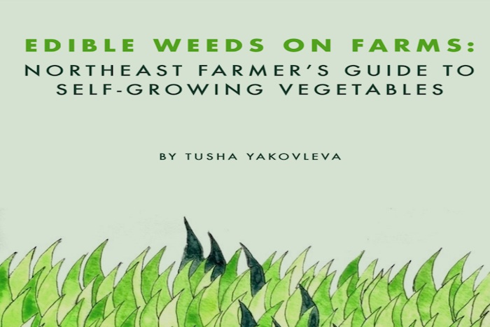 Edible Weeds on Farms