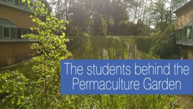 Photo of The students behind the Permaculture Garden