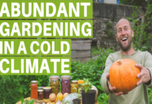 Photo of The Easiest Most Abundant Food To Grow – Gardening In A Cold Climate