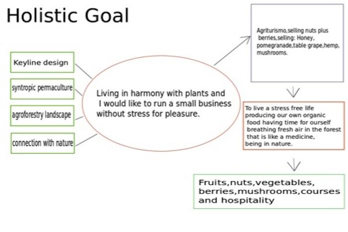 Holistic Goal