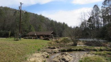 Photo of Living the Homesteader Dream – Hope Springs Every Spring